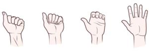 Flexion-extension doigts